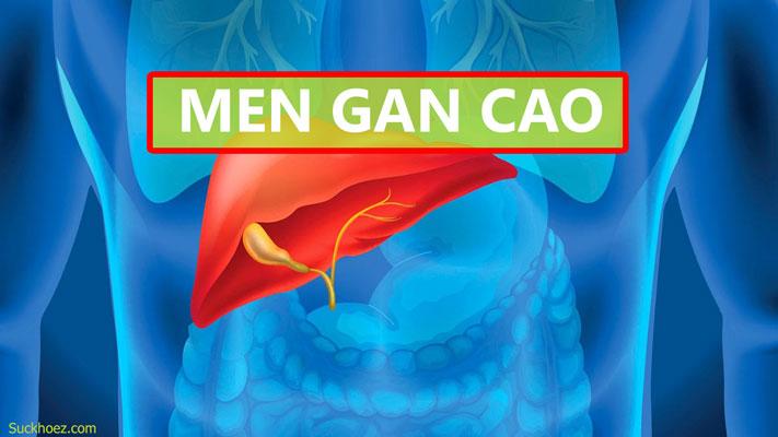 MEN GAN TĂNG CAO NGUY HIỂM THẾ NÀO VỚI SỨC KHỎE CỦA BẠN